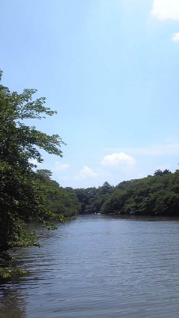 井の頭公園2011/06/06