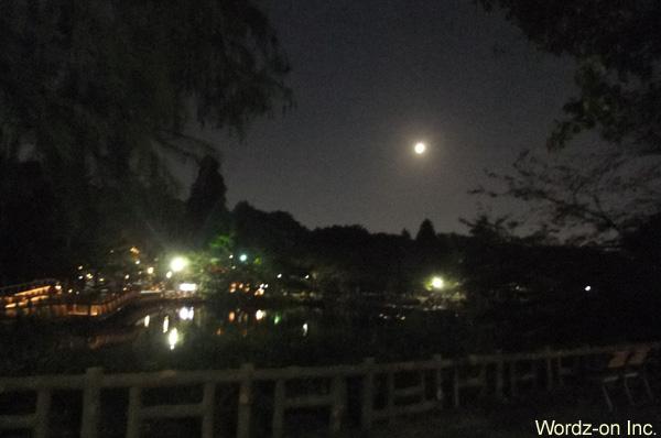 井の頭池と立待月